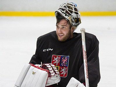 Pavel Francouz, MS v hokeji 2017